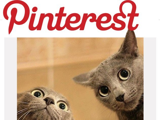 Come avere più followers su Pinterest